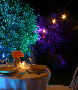 Great Event and Wedding lighting should transform a space through the augmentation of its best features. We will immerse your guests in a scene that they will remember through our unique lighting design and colour enhancement.